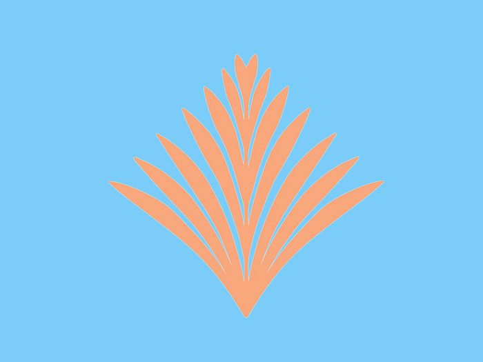 palmierscreen